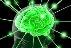 herbs seizures neurological lyme