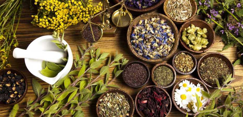 Herbs for social anxiety from Lyme