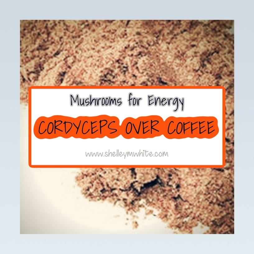 Cordyceps Mushrooms for Energy