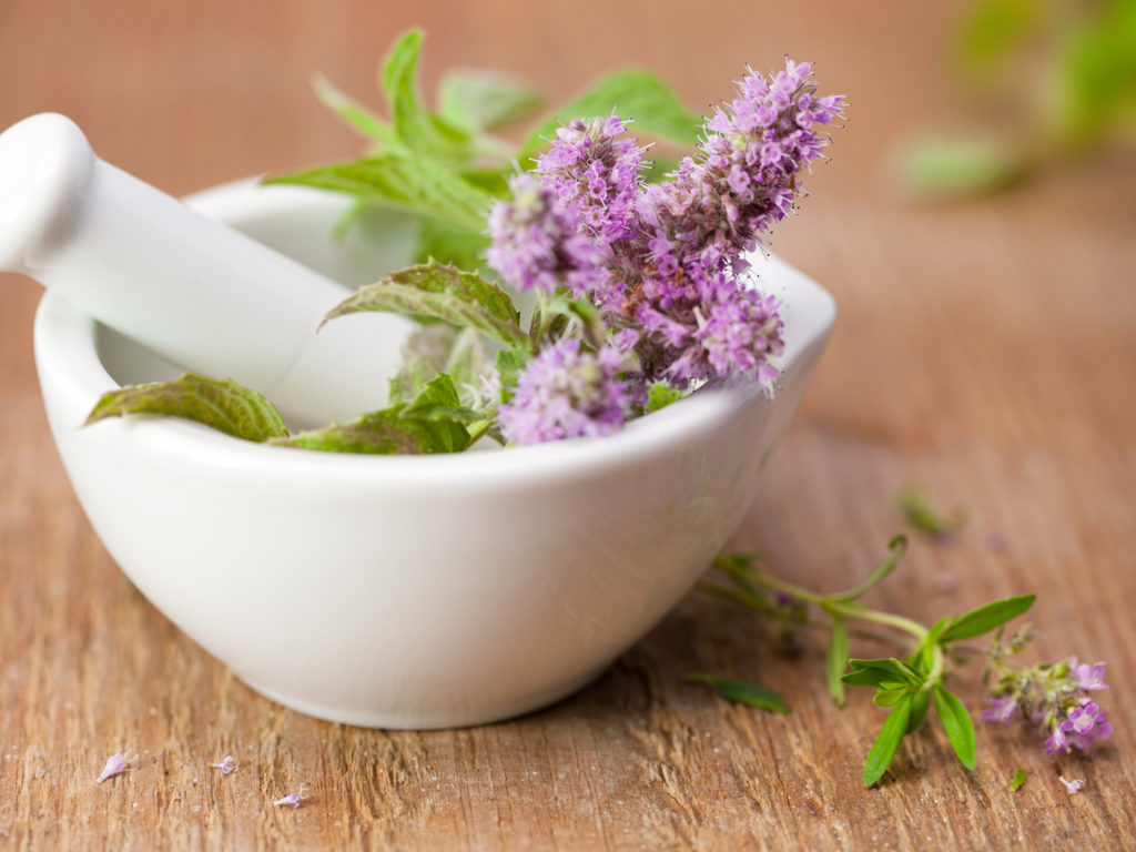 herbs for organ support during lyme treatment