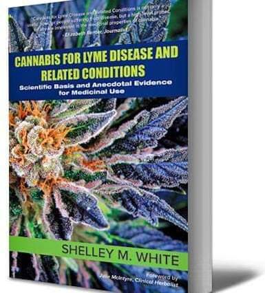 cannabis for Lyme disease Shelley m white