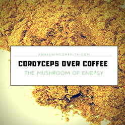 Cordyceps are a great way to naturally increase energy