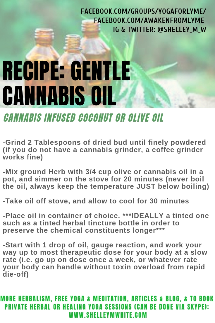 cannabis oil lyme recipe Shelley m white