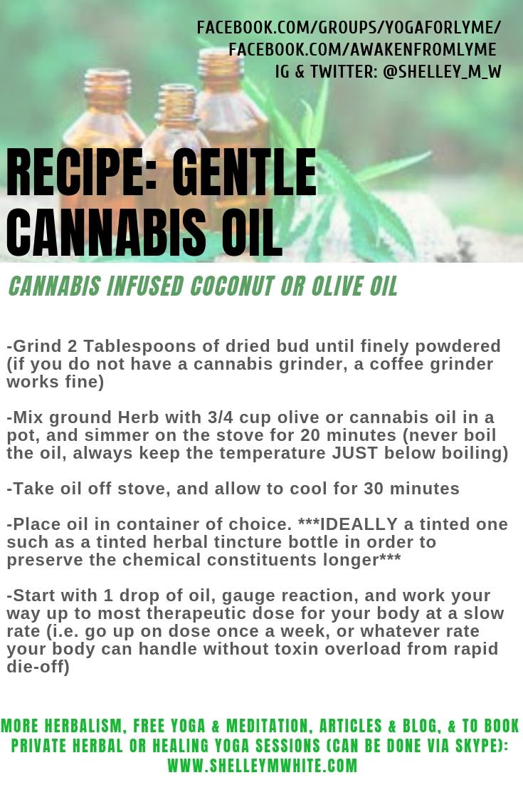 cannabis oil lyme recipe Shelley m white