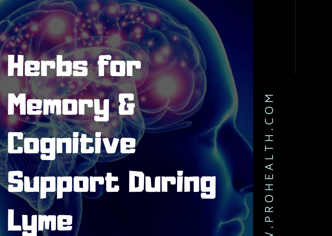 Herbs and Supplements for Memory and Cognitive Support During Lyme
