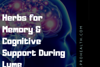 herbs for neurological Lyme disease , herbs for memory Lyme disease, herbs for brain and cognitive Lyme disease