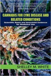 cannabis for lyme disease
